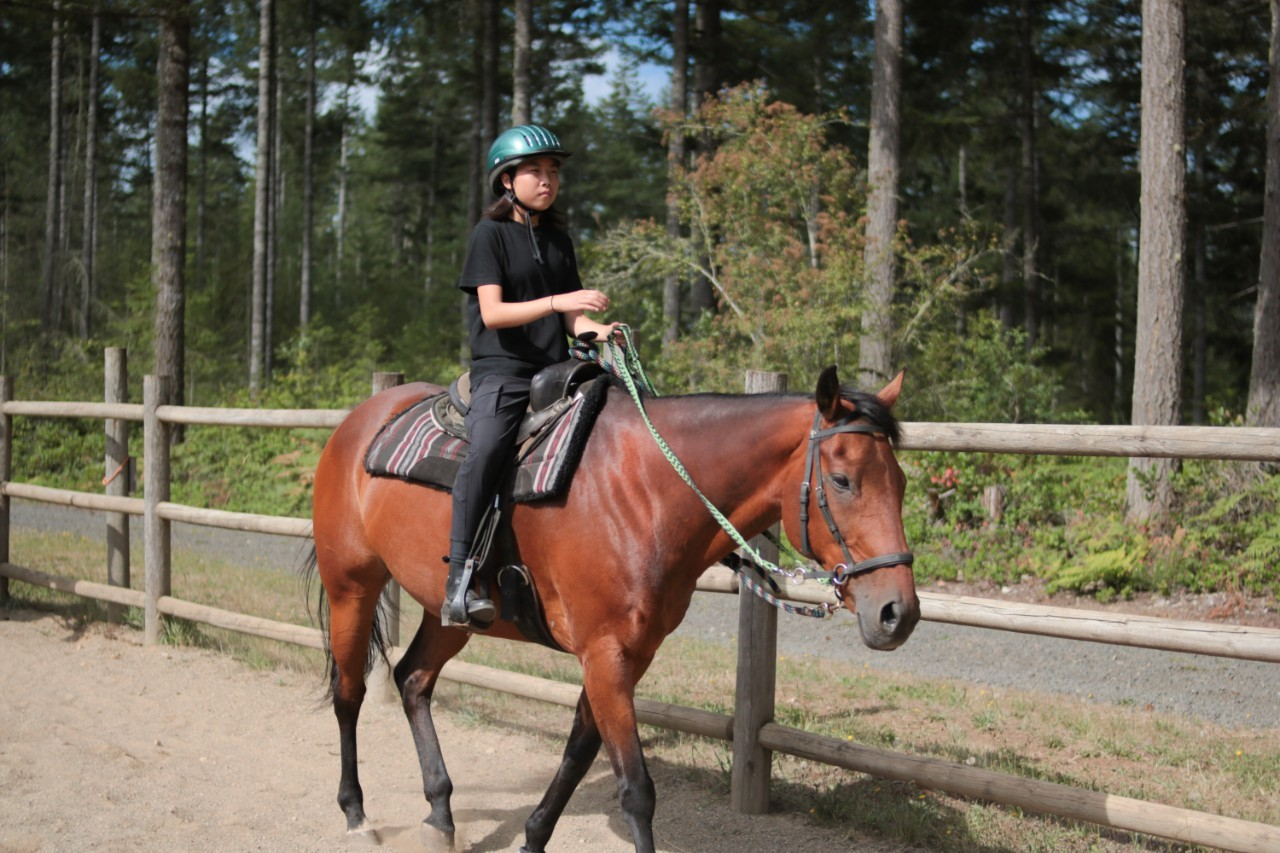 Horseback Riding St Albans